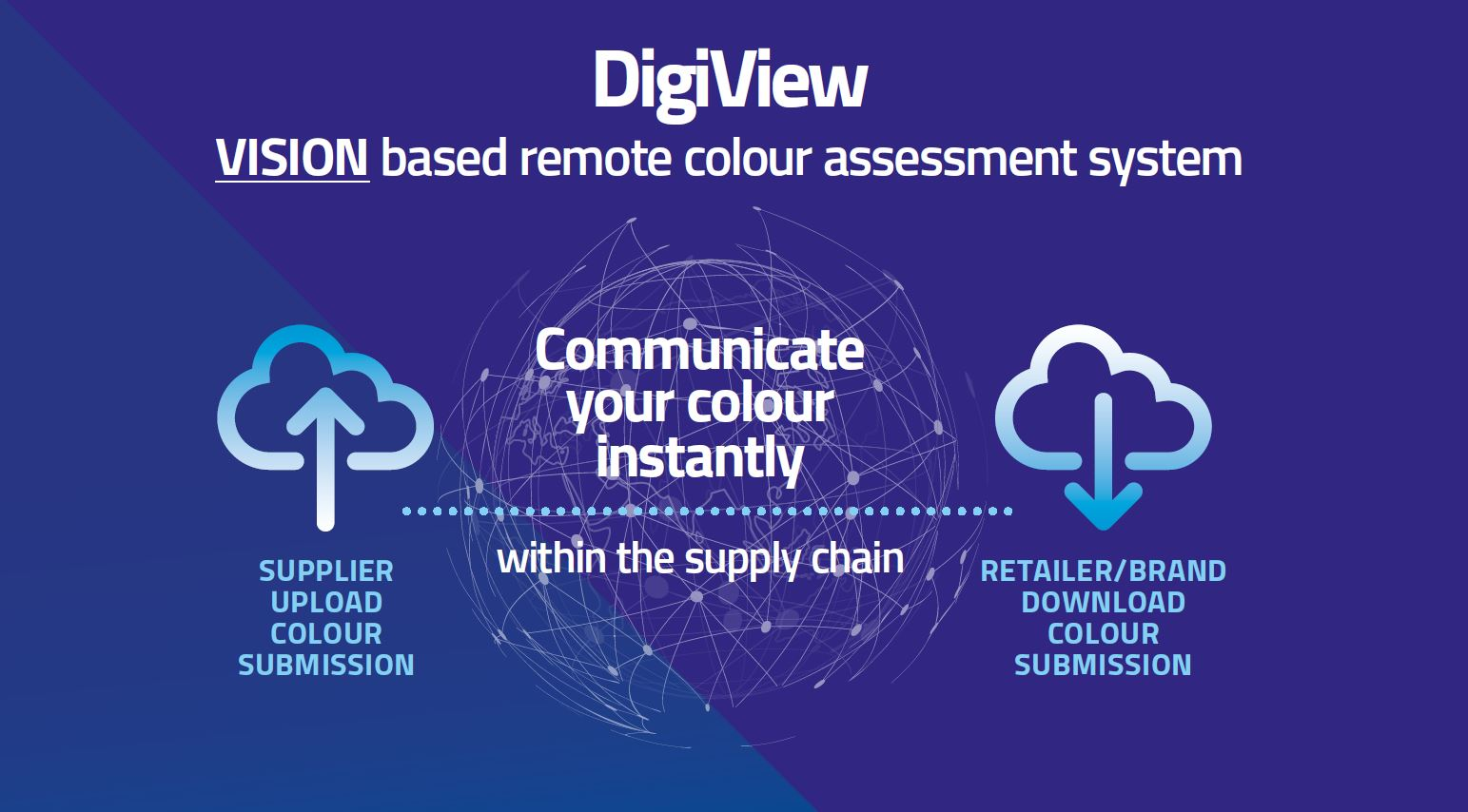 DigiView Infographic