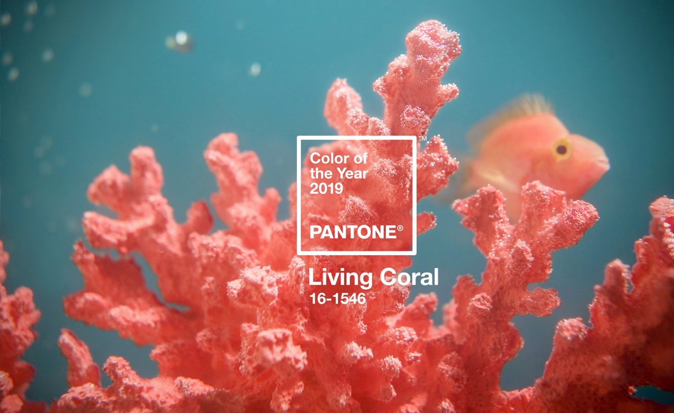 Pantone COY 2019 Living Coral16-1546