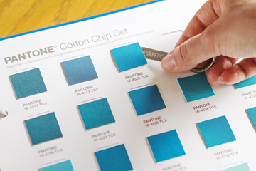 Pantone Cotton Chip Set