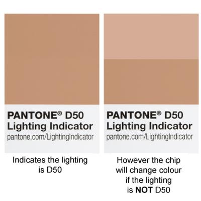 Pantone D65 Colour Chip brown