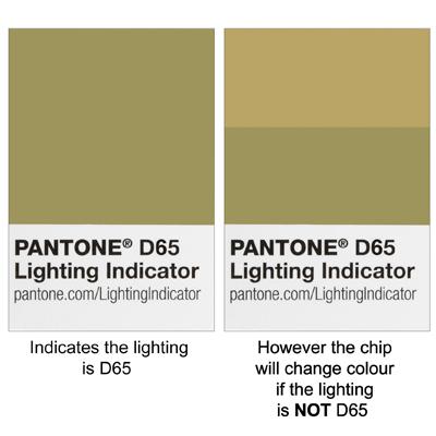 Pantone D65 Colour Chip green