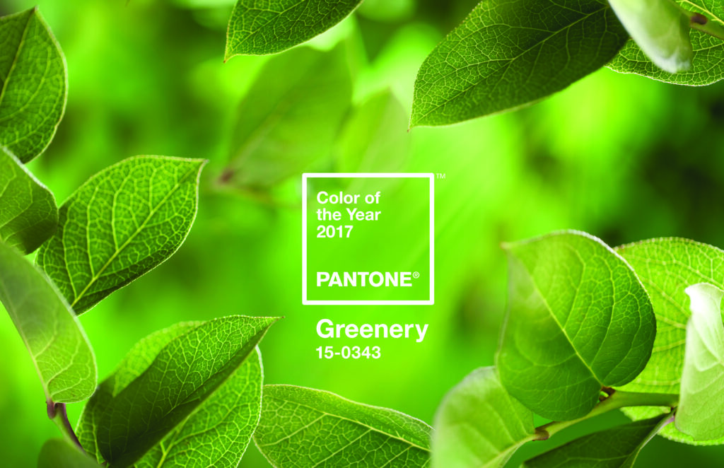 Pantone's Colour of the Year 2017 has been announced…