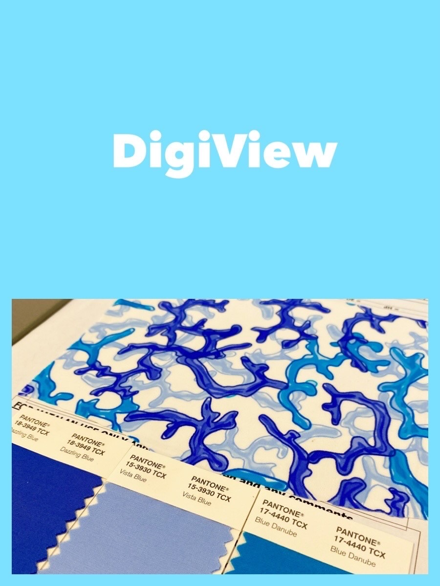 DigiView